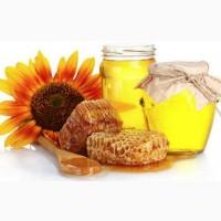 ТД Медовый город покупает мед