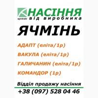 Сертифіковане насіння, Ячмінь ярий Вакула, Галичанин, Командор, Адапт -від виробника