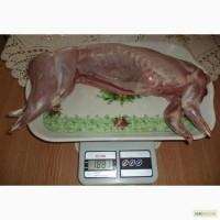 Продам м#039;ясо кролика