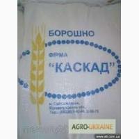 Export Wheat Flour - Extra (Premium) Grade