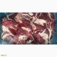Селезінка свинна