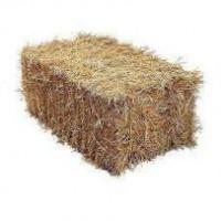 Продам солому ячменя, пшеницы