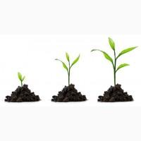 Регуляторы роста от компании Дер Трей