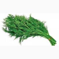 Продажа зелени в ассортименте
