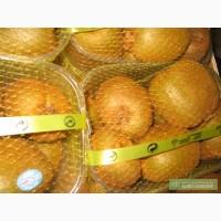 Продам киви (три вида) из Италии оптом