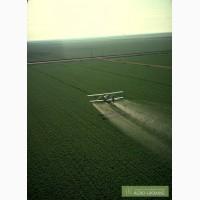 Авиаобработка пшеницы и рапса самолетами Ан-2 и агровертолетами