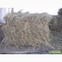 Луговое сено в блоках
