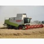 Предоставляю услуги по уборке сельскохозяйственных культур