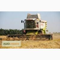 Оказываем услуги по уборке урожая 2020