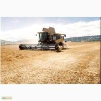 Услуги комбайна/ уборка урожая