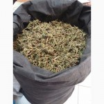 Чабрец трава Земляника лист Земляника лист