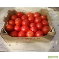 Продажа помидоров Силуэт