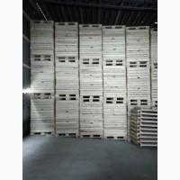Продам контейнери, ящики деревяні для зберігання яблук