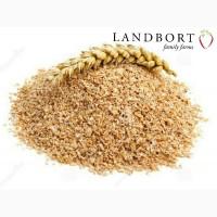Продам висівки пшеничні