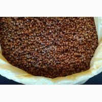Продам бактороденцид зерновой, отрава от грызунов, на поля, склады, хозяйства