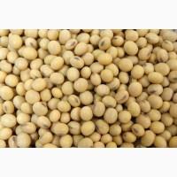 Семена/посевной материал сои Харди