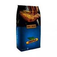 Семена Кукурузы ДКС 3939 (DKC 3939)