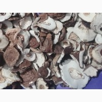 Продам гриби