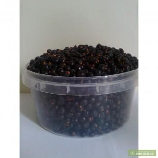Плоды можжевельника чёрного