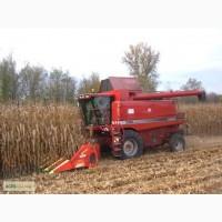 Услуги по уборке зерновых, подсолнечника, кукурузы, сои (Case 2388, Claas Lexion 480)