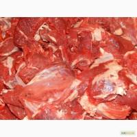 Первый сорт блочка говядина