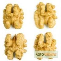 Закупаем дорого очищенный грецкий орех нового урожая