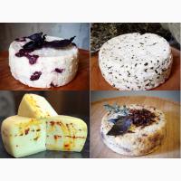Сыр качотта - НОВЫЕ вкусы: курага, клюква, базилик, ...