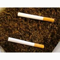 Табак для забивки в гильзы, самокруток и трубки, ферментированный лапша.СЕМЕНА -20грн