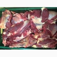 Продам 1 сорт та 2 і вищий яловичу (говяжу) без води та домішок