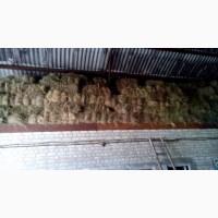 Продам прекрасное луговое сено и люцерны