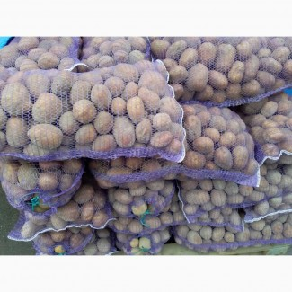 Продам картофель Гранад