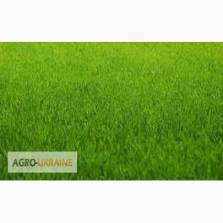 Газонная трава (суміш газонна) -спортивный, теневой, униве рсал