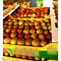 Ящик под яблоки
