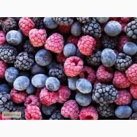Закупаем оптом замороженные ягоды и фрукты