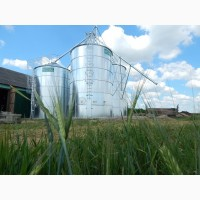 Зернохранилище силос с плоским дном, 76 т
