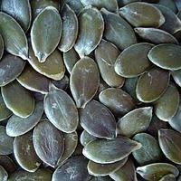 Скупаем семечку тыквы Голосемянной