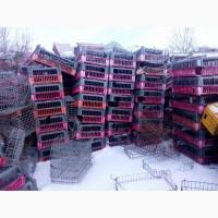 Ящики для перевозки живой птицы бу дешево