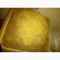 Продам тютюн, сорт Вірджинія Голд, насіння із США