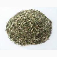 Материнка (Душица) (трава) 1кг