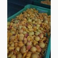 Продам замороженую абрикосу