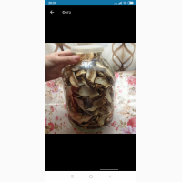 Продам Білі гриби