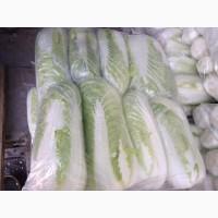 Продам пекинскую капусту