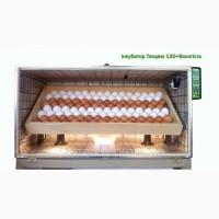 Инкубатор Тандем на 120яиц+регуровка Влажности