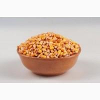 Пропонуємо органічну кукурудзу