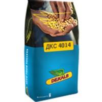 Семена Кукурузы ДКС 4014 (DKC 4014)