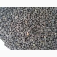 Продам горобину чорноплідну (аронію)