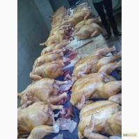 Мясо домашнего бройлера в Чернигове