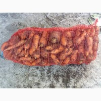 Продам морковь Абака 2 сорт от производителя Дніпропетровська обл