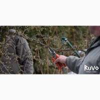 Обрезка деревьев в Киеве и Киевской области