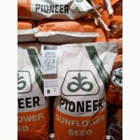 Продам семена пионер